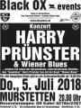 images/Events/Eventarchiv/20180705_Plakat_Harry-Pruenster_BA.jpg